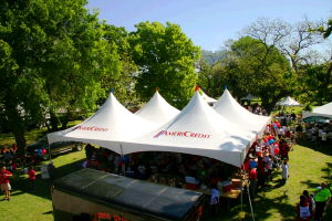 Where to find 40  X 40  MARQUEE TENT in Dallas