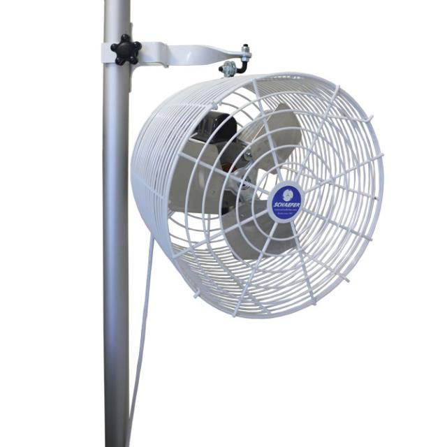 Where to find TENT POLE FAN, MOUNTED in Dallas