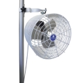Rental store for TENT POLE FAN in Dallas TX